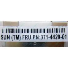 Серверная память SUN (FRU PN 371-4429-01) 4096Mb (4Gb) DDR3 ECC в Набережных Челнах, память для сервера SUN FRU P/N 371-4429-01 (Набережные Челны)
