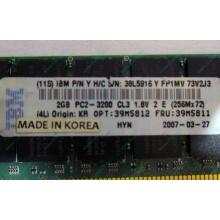 IBM 39M5811 39M5812 2Gb (2048Mb) DDR2 ECC Reg memory (Набережные Челны)