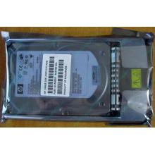 HDD 146.8Gb HP 360205-022 404708-001 404670-002 3R-A6404-AA 8D1468A4C5 ST3146707LC 10000 rpm Ultra320 Wide SCSI купить в Набережных Челнах, цена (Набережные Челны)